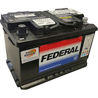 Federal 9AGM48 Auto Battery