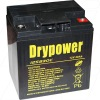 Drypwer 12V 30Ah Sealed Lead Acid Battery